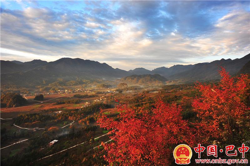 空山天盆景区—叶君摄.jpg