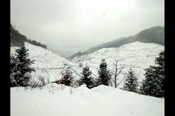 通江县:多地出现今冬最低气温开始降雪