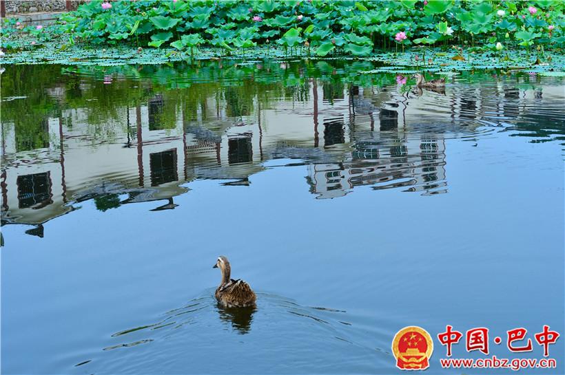 万寿养生谷国家AAAA级旅游景区.jpg