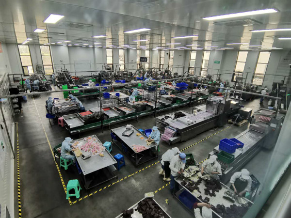 巴中恩阳:多措并举助力企业复产项目复工