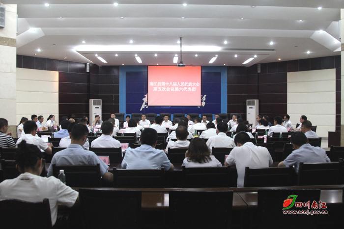李善君参加南江县第十八届人民代表大会第五次会议分团审查